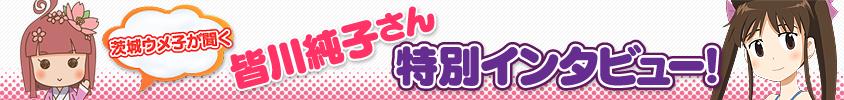 obi_minagawa