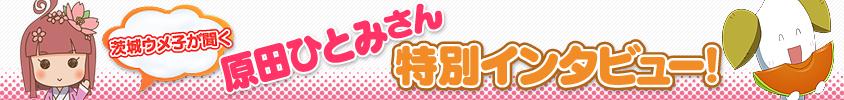 obi_原田_140812